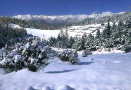 点击打开景区内景点:甲五神山的详细介绍…