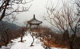 点击打开景区内景点:欢喜园和蟾蜍峰的详细介绍…