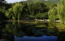 点击打开景区内景点:静翠湖的详细介绍…