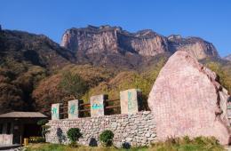 点击打开景区内景点:秦汉古杏的详细介绍…