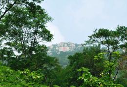 点击打开景区内景点:龙山景观的详细介绍…