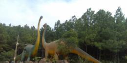 点击打开景区内景点:恐龙生态园的详细介绍…