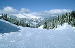点击打开景区内景点:滑雪场的详细介绍…