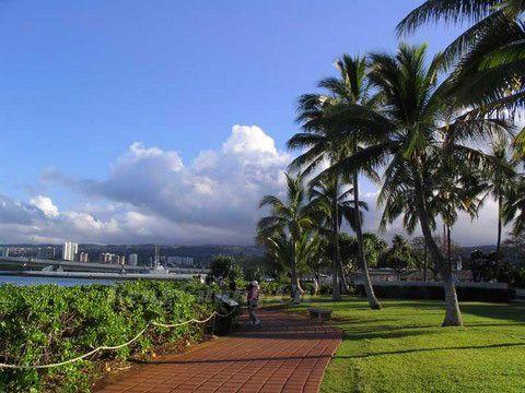 这里有细致洁白的沙滩,摇曳多姿的椰子树以及林立的高楼大厦.图片